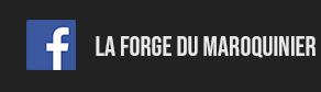 Facebook bouton laforgedumaroquinier.fr